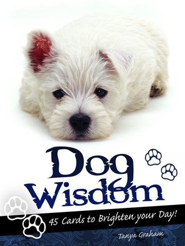 Bild på Dog Wisdom: 45 Cards To Inspire & Uplift (45 Cards & 50-Page
