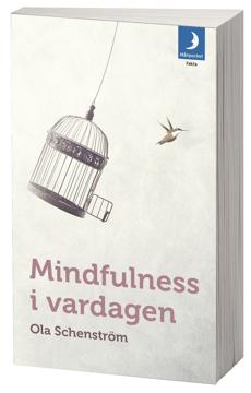 Bild på Mindfulness i vardagen : Vägar till medveten närvaro