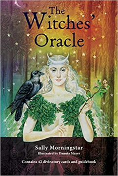 Bild på The Witches' Oracle: (Book & Cards)
