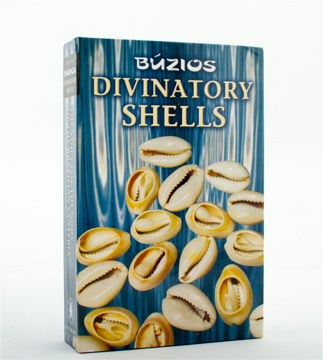 Bild på Divination Shells Kit